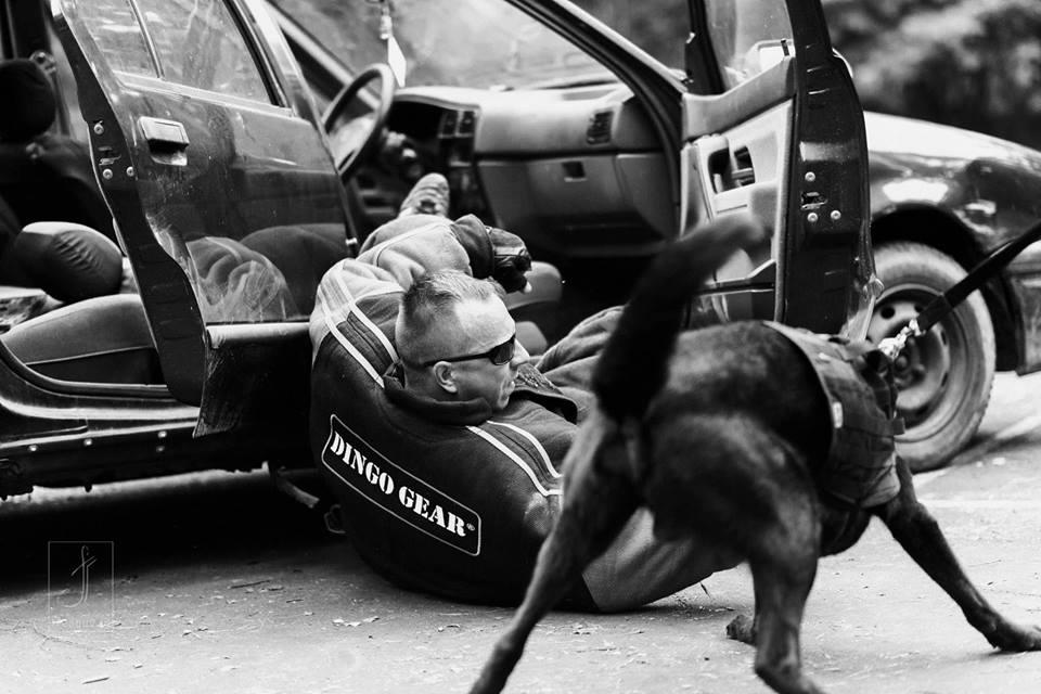 """""""Republika pod psem"""" Tomasz Gotowała – partner Dingo Gear"""