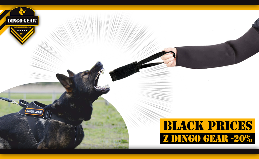 Black prices on Friday, Saturday and Sunday with Dingo Gear!