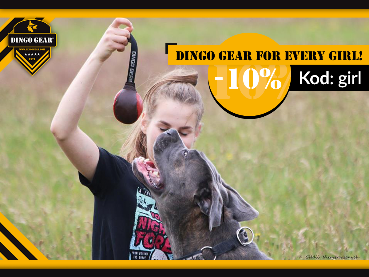 Dingo Gear for every girl!