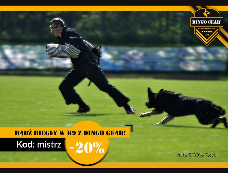 Sprawdź promocję i bądź biegły w K9 z Dingo Gear
