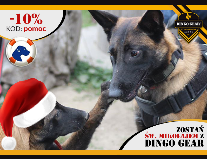 Zostań Św.Mikołajem z Dingo Gear