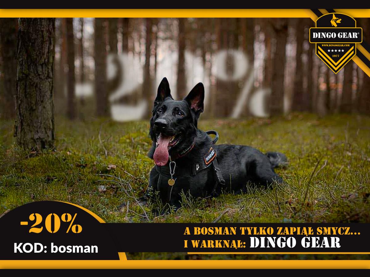Dołącz do Bosmana i Dingo Gear