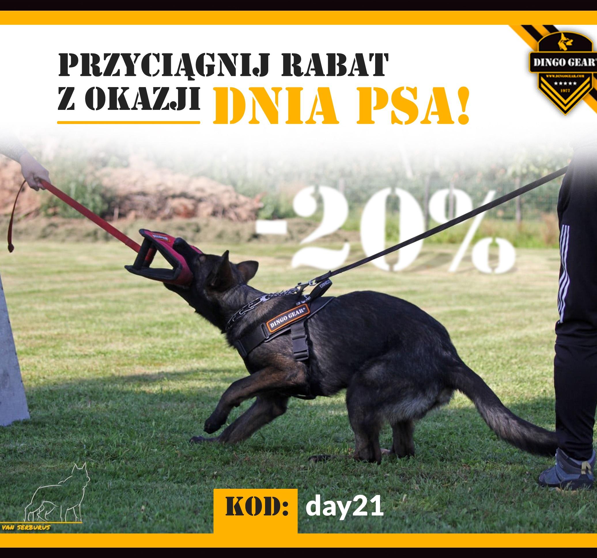 Gearowa promocja na Dzień Psa-przyciągnij rabat!!!