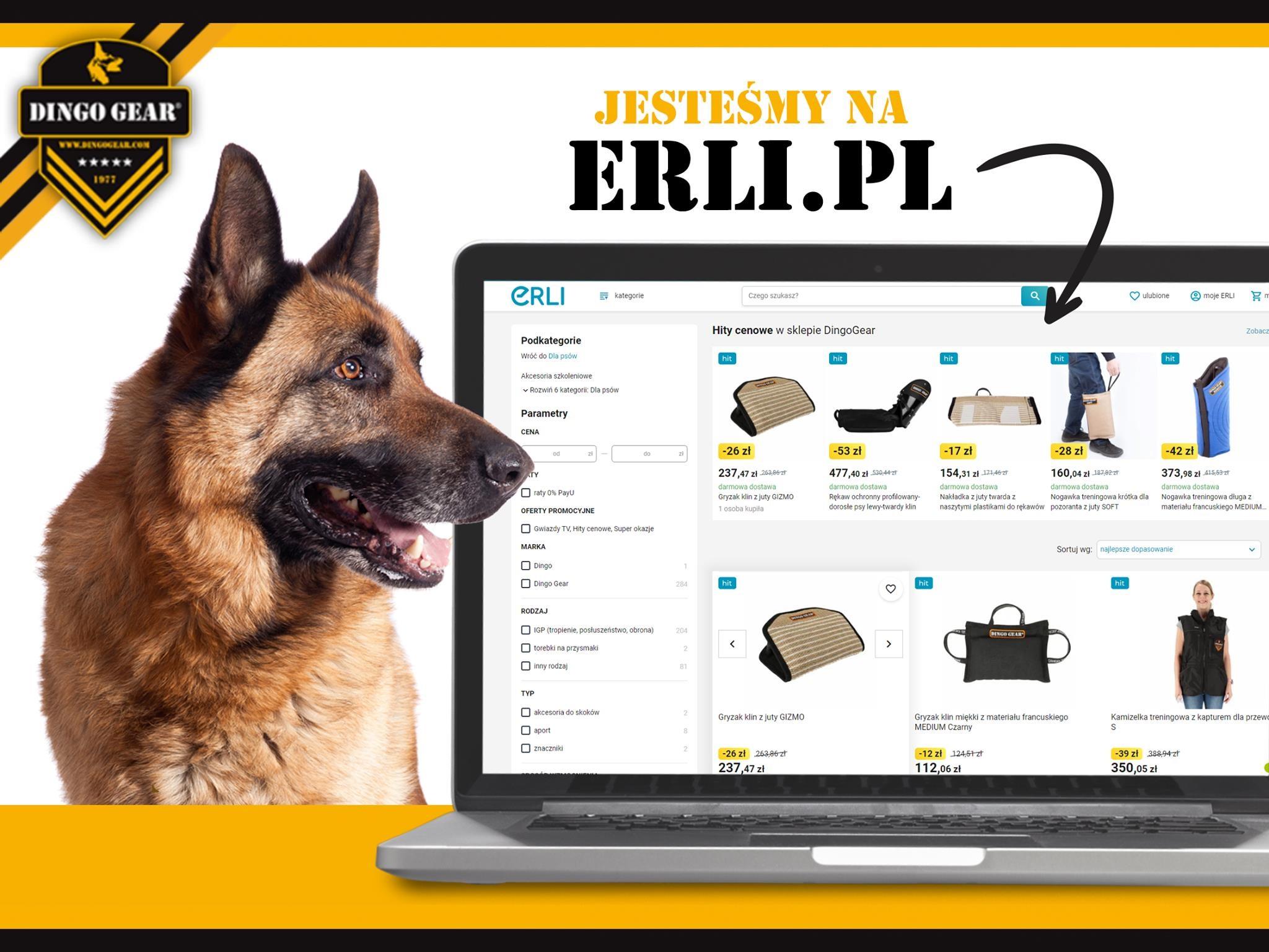 Dingo Gear na ERLI.PL