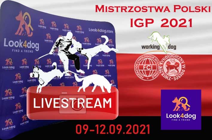 Zapraszamy na Otwarte Mistrzostwa Polski IGP Ostrowiec Świętokrzyski / Bałtów 09-12 . 09 . 2021