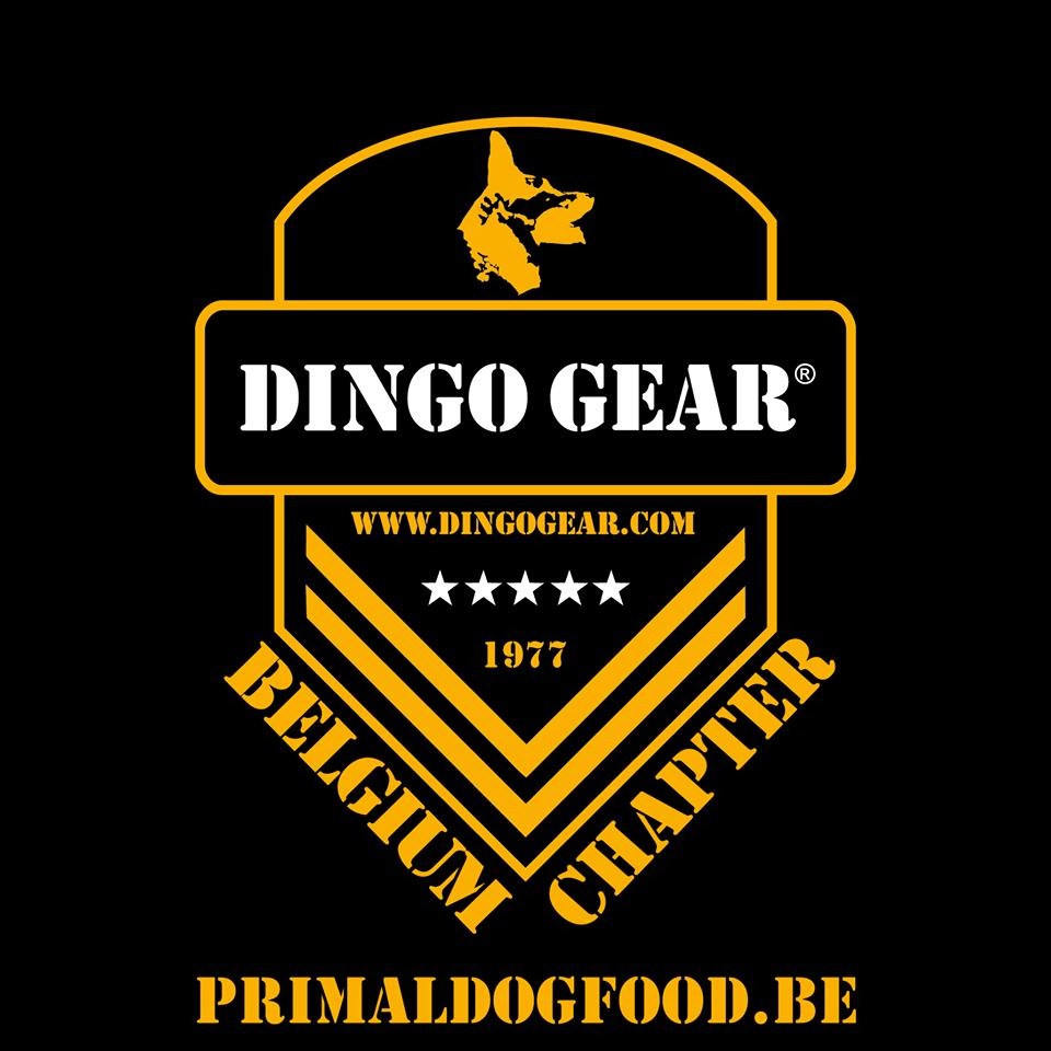 Wizyta naszego partnera Dingo Gear België