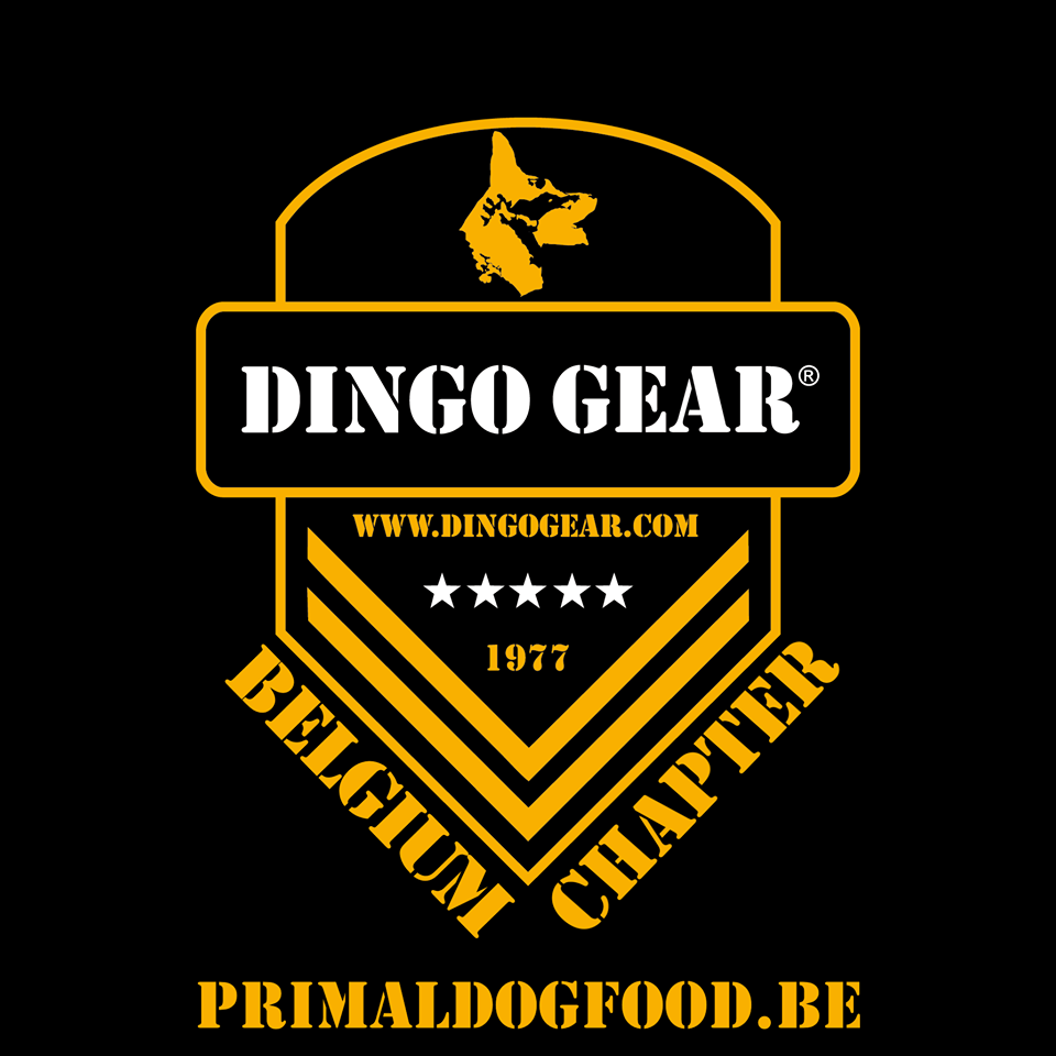 Dingo Gear Belgia – Primal Dog Food