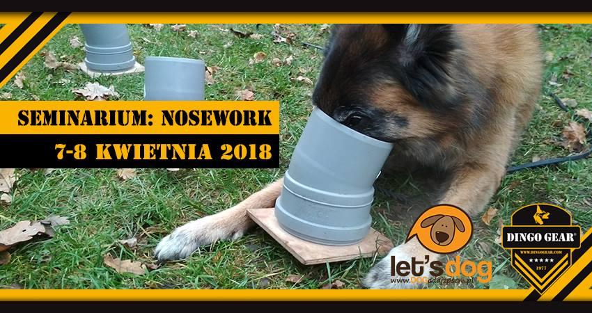 Seminarium z noseworku  7-8 kwietnia 2018 poprowadzi Katarzyna Jakubowska – założycielka szkoły DOGadaj się z psem