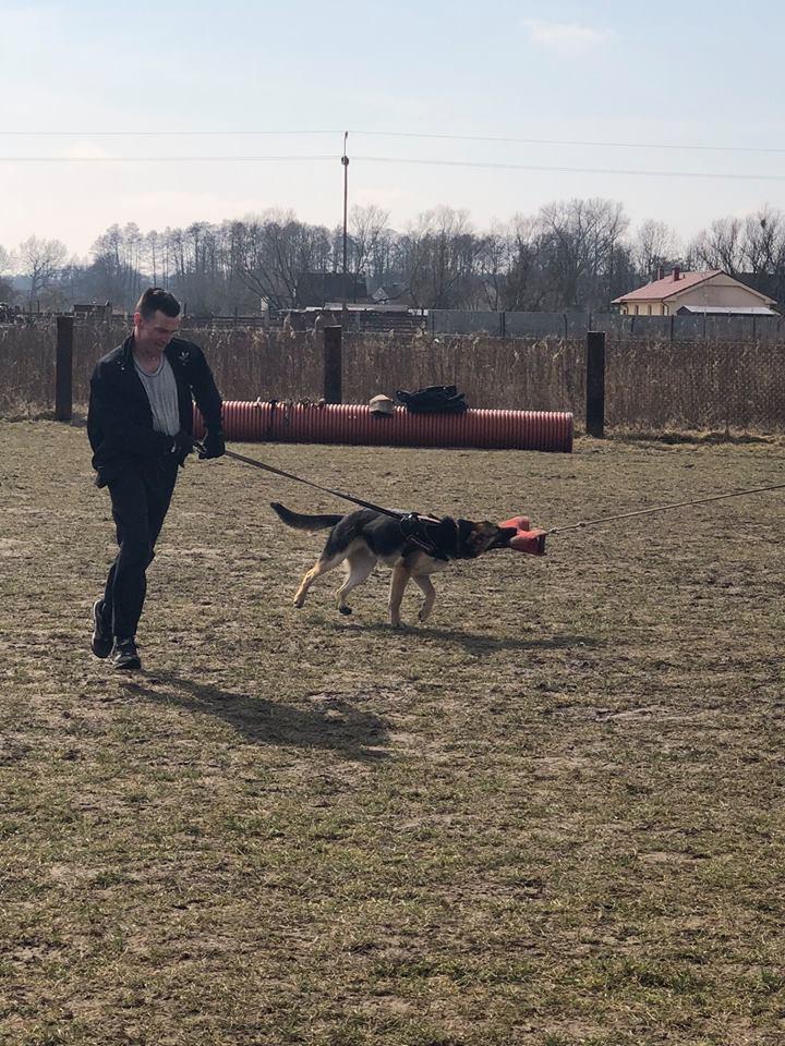 Psia Akademia – AXTA w Słubicach