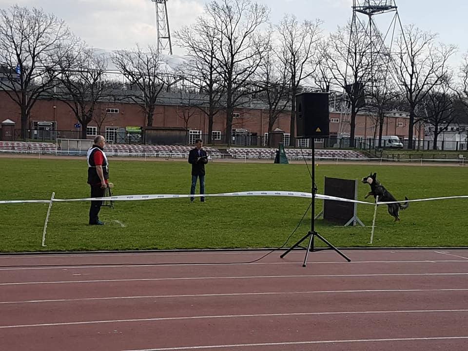 Krajowe Zawody IPO Pucharu Polski- Wrocław 2018