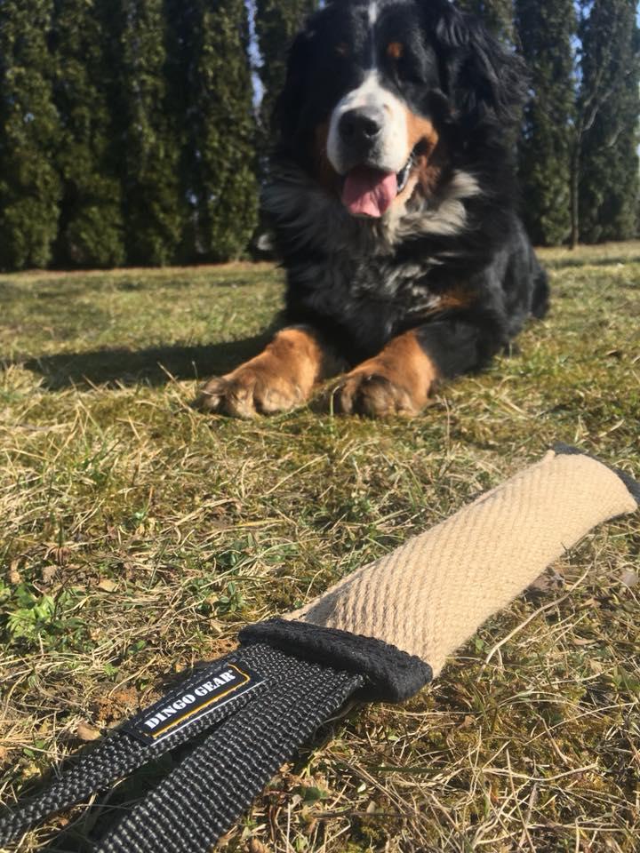 RECENZJA: Szarpak jutowy od Dingo Gear – Życie z Waryatem