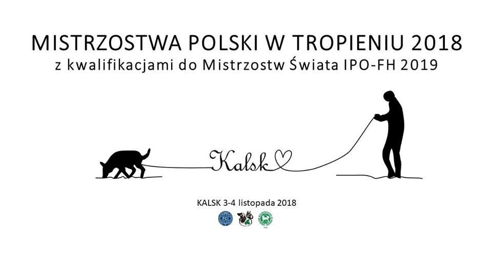 Mistrzostwa Polski w Tropieniu 3-4.11.2018 Kalsk – kwalifikacje do Mistrzostw Świata IPO-FH2019