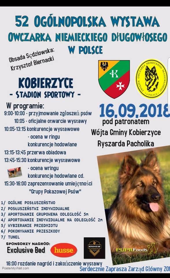 52 Ogólnopolska Wystawa Owczarka Niemieckiego Długowłosego – 16.09.2018 Kobierzyce