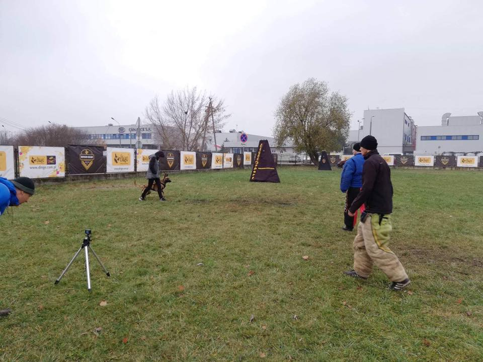 Ring Francuski Polska – drugi etap 10-11.11.2018