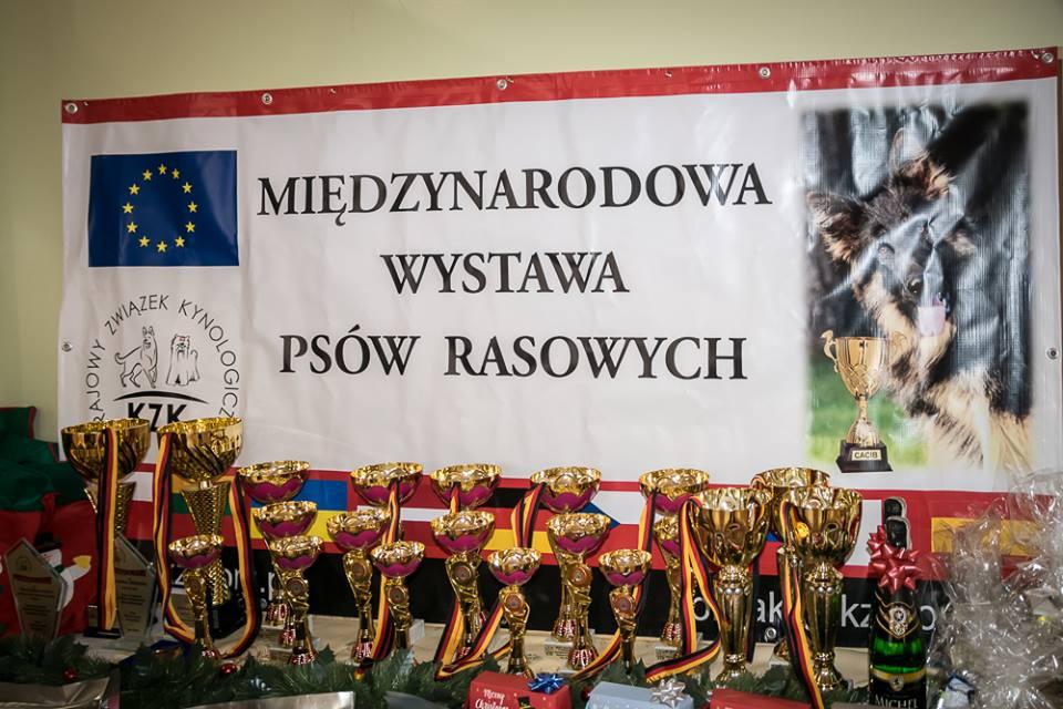 """""""Mikołajkowa"""" Międzynarodowa Wystawa Psów Rasowych CACIB w Otyniu"""