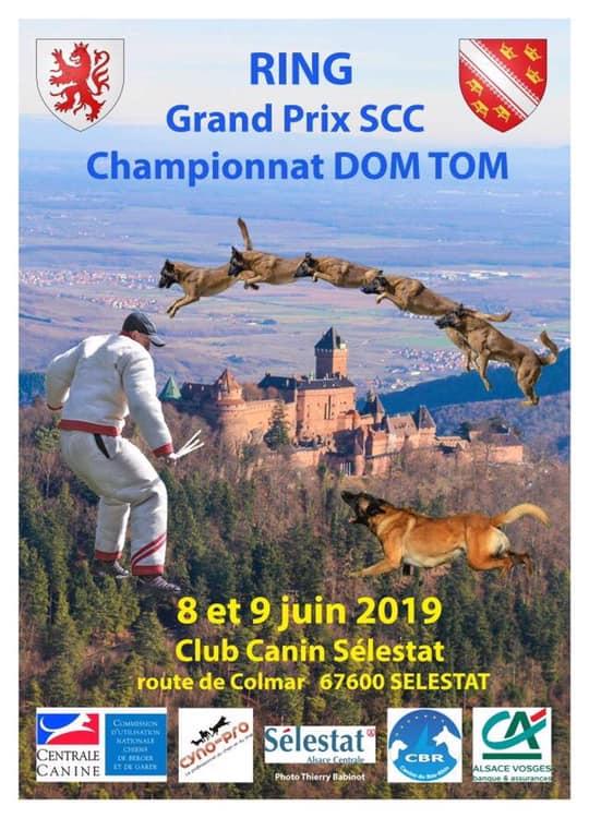 Mistrzostwa Ring Grand Prix Francja – 8-9.06.2019