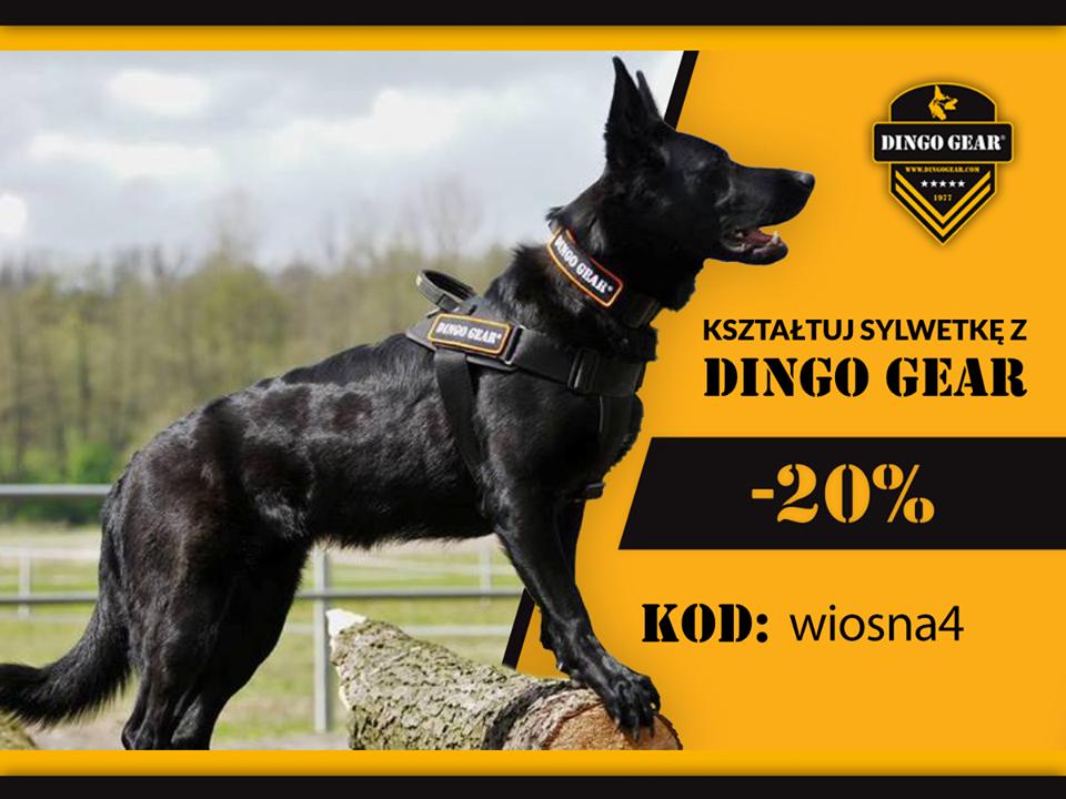 Kształtuj sylwetkę wiosną z Dingo Gear.