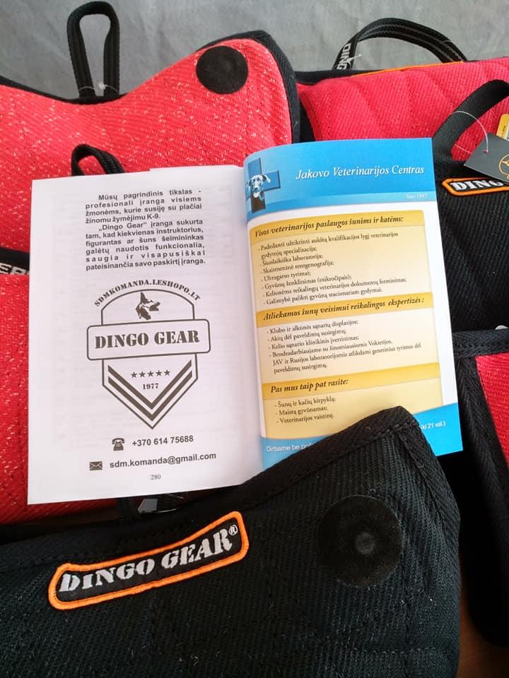 Druskienniki 2019 i Dingo Gear