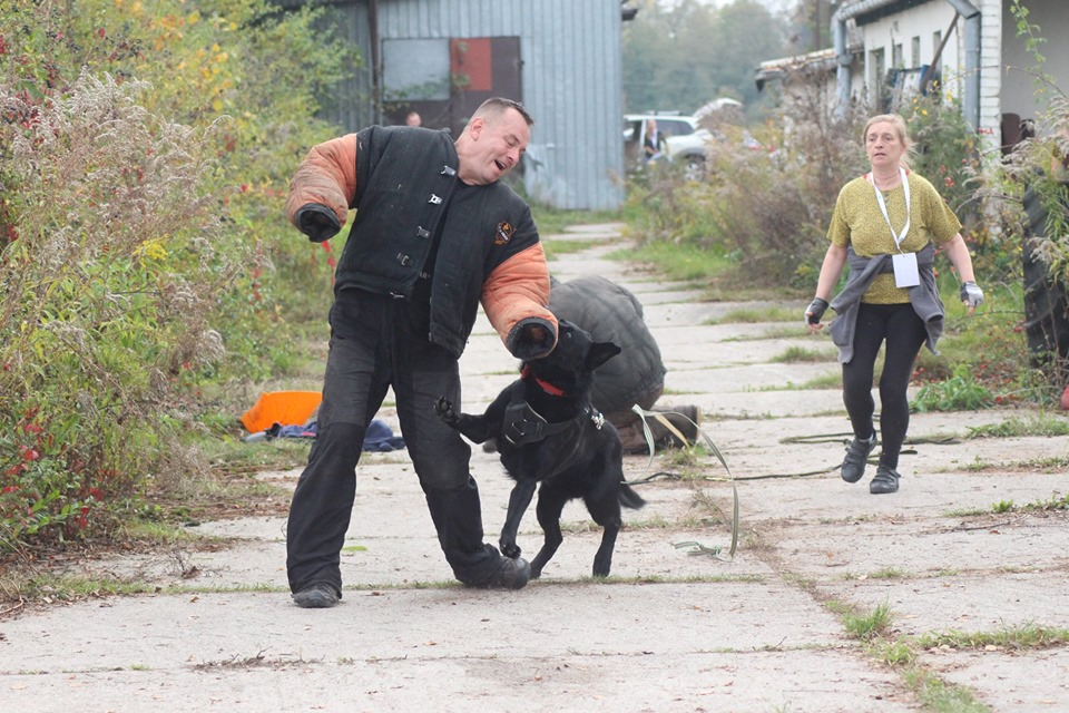 Weź udział w szkoleniu  Pies obrońca i przyjaciel