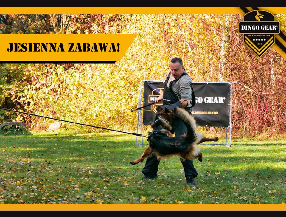 Zapraszamy do udziału w fotokonkursie Jesienna zabawa