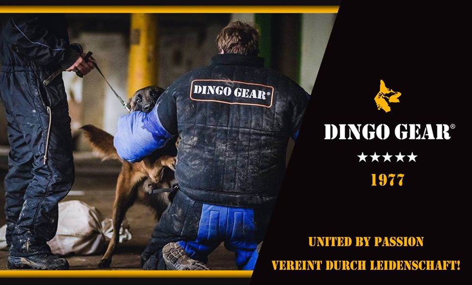 Dingo Gear w United Kingdom i Deutschland
