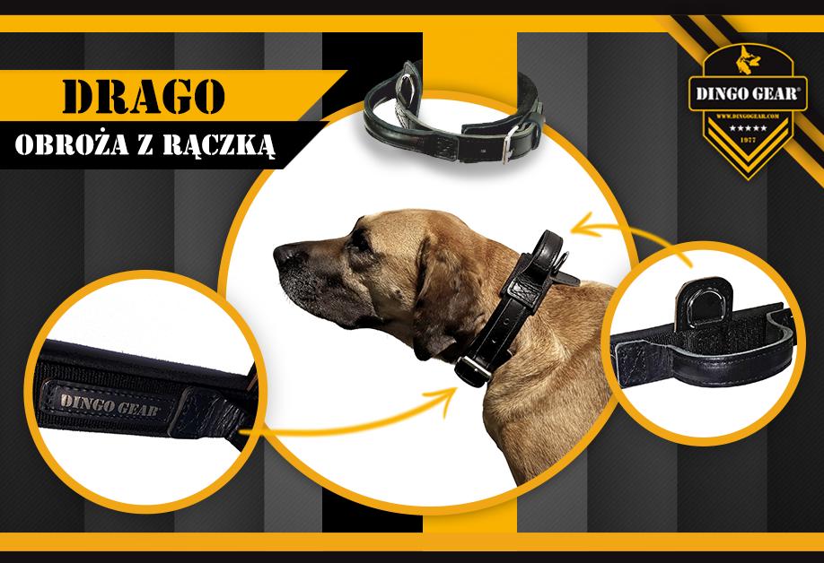 Przetestuj ze swoim psem DRAGO czyli smoka