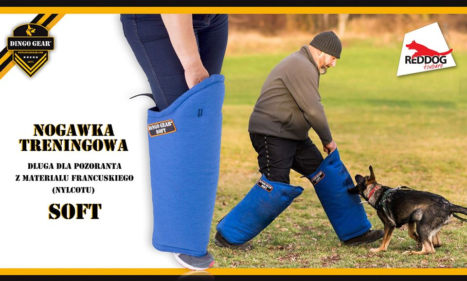 Ćwicz i trenuj z nogawką Dingo Gear