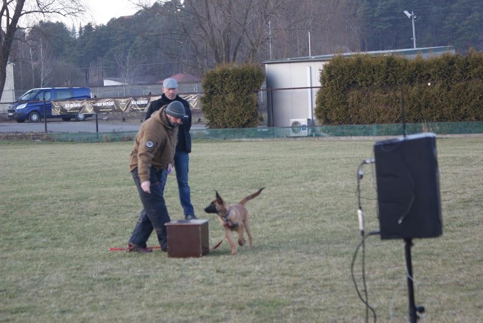 """Kliker""- zastosowanie w szkoleniu psa. Seminarium 11-12.03.2017r"