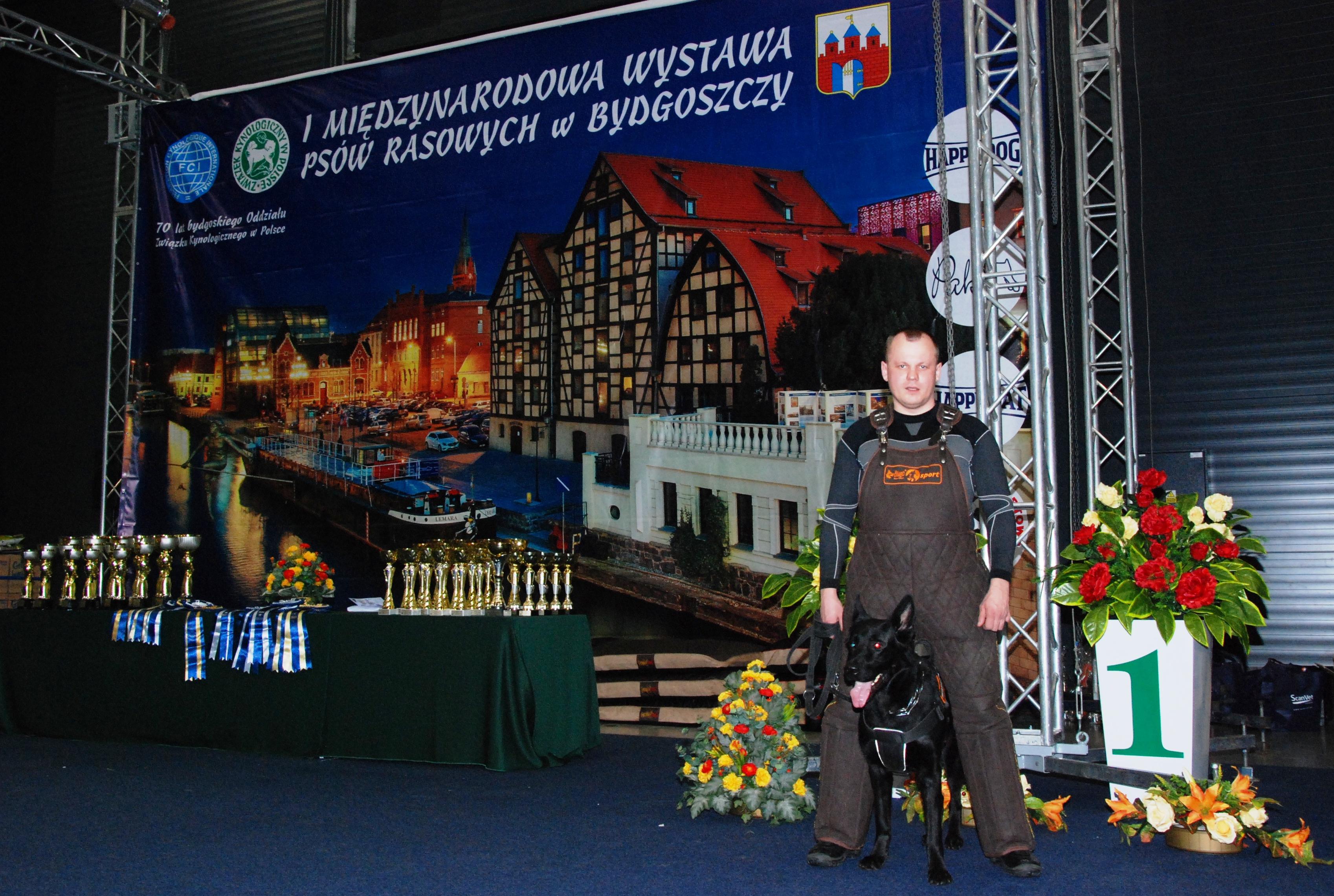 Pokaz pracy przewodników i psów służbowych ze Straży Miejskiej w Bydgoszczy