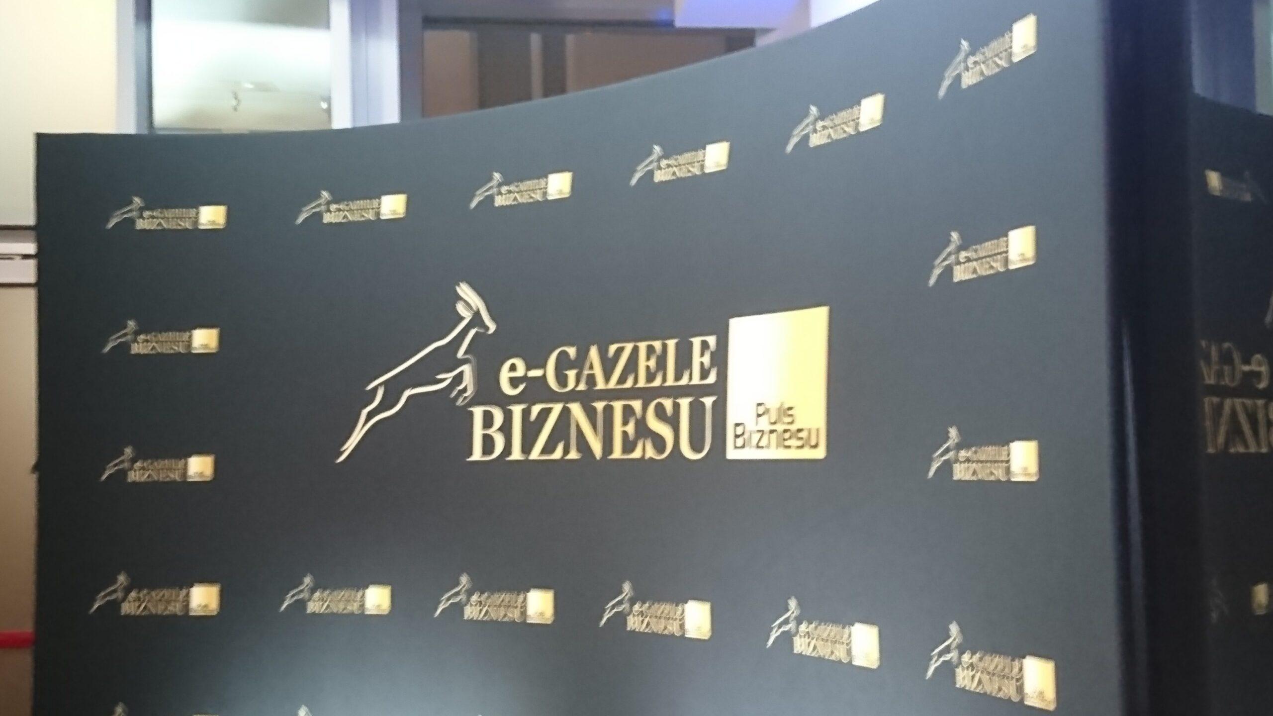 E-Gazela Biznesu 2019 dla Dingo!