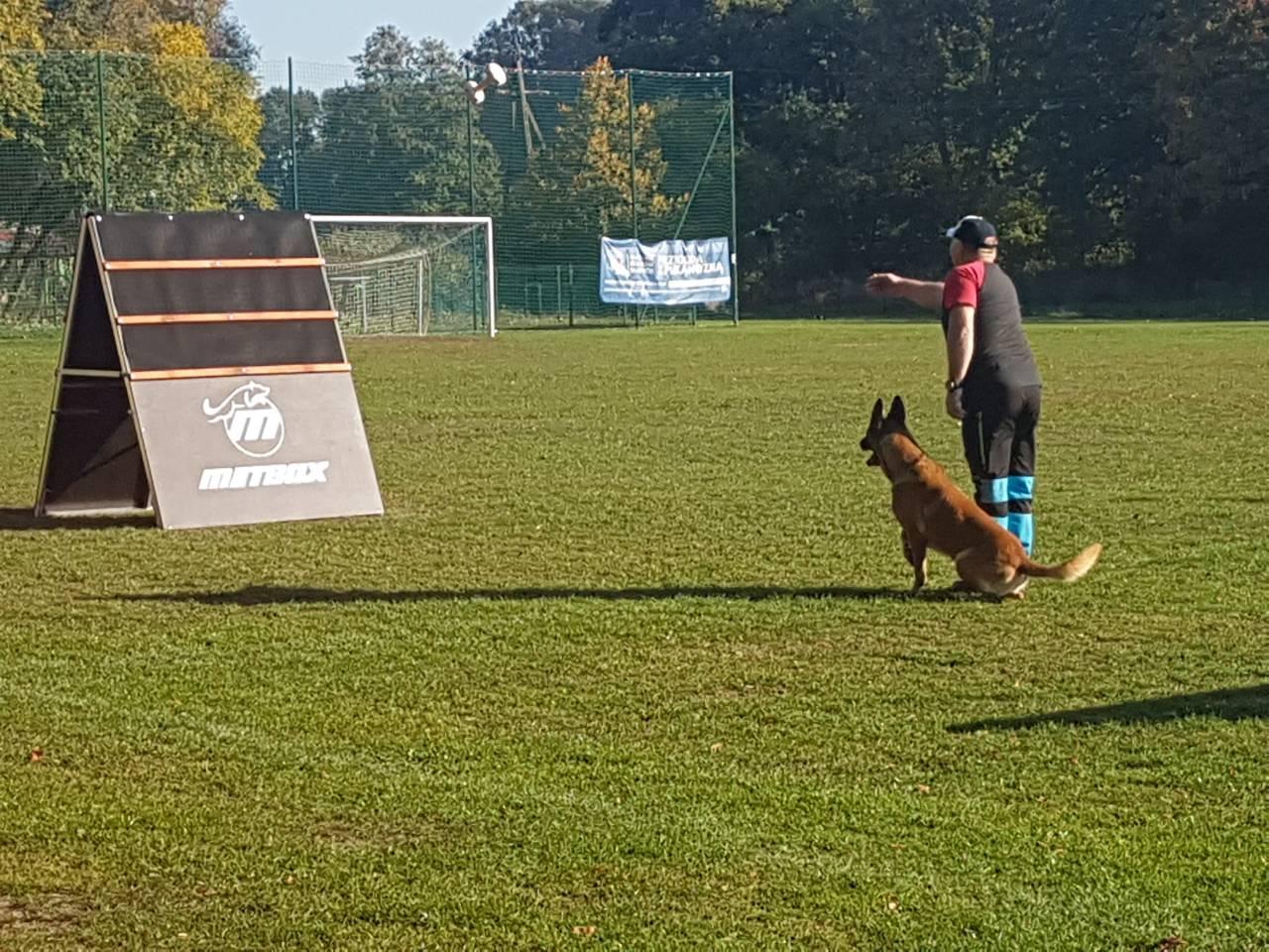 Mistrzostwa Polski IPO 13-14.10.2018