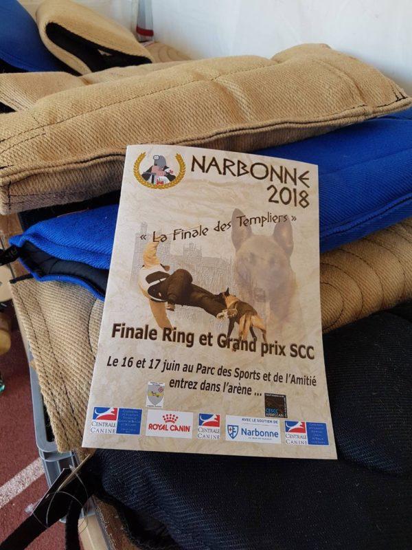 Finale Ring et Grant prix SCC Narbonne 2018 Francja