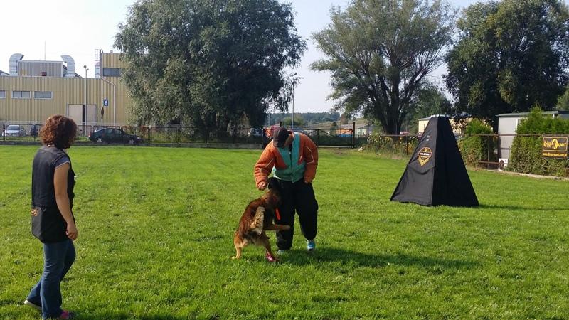 Nowy plac szkoleniowy oraz wizyta specjalnego gościa w K9 Dingo