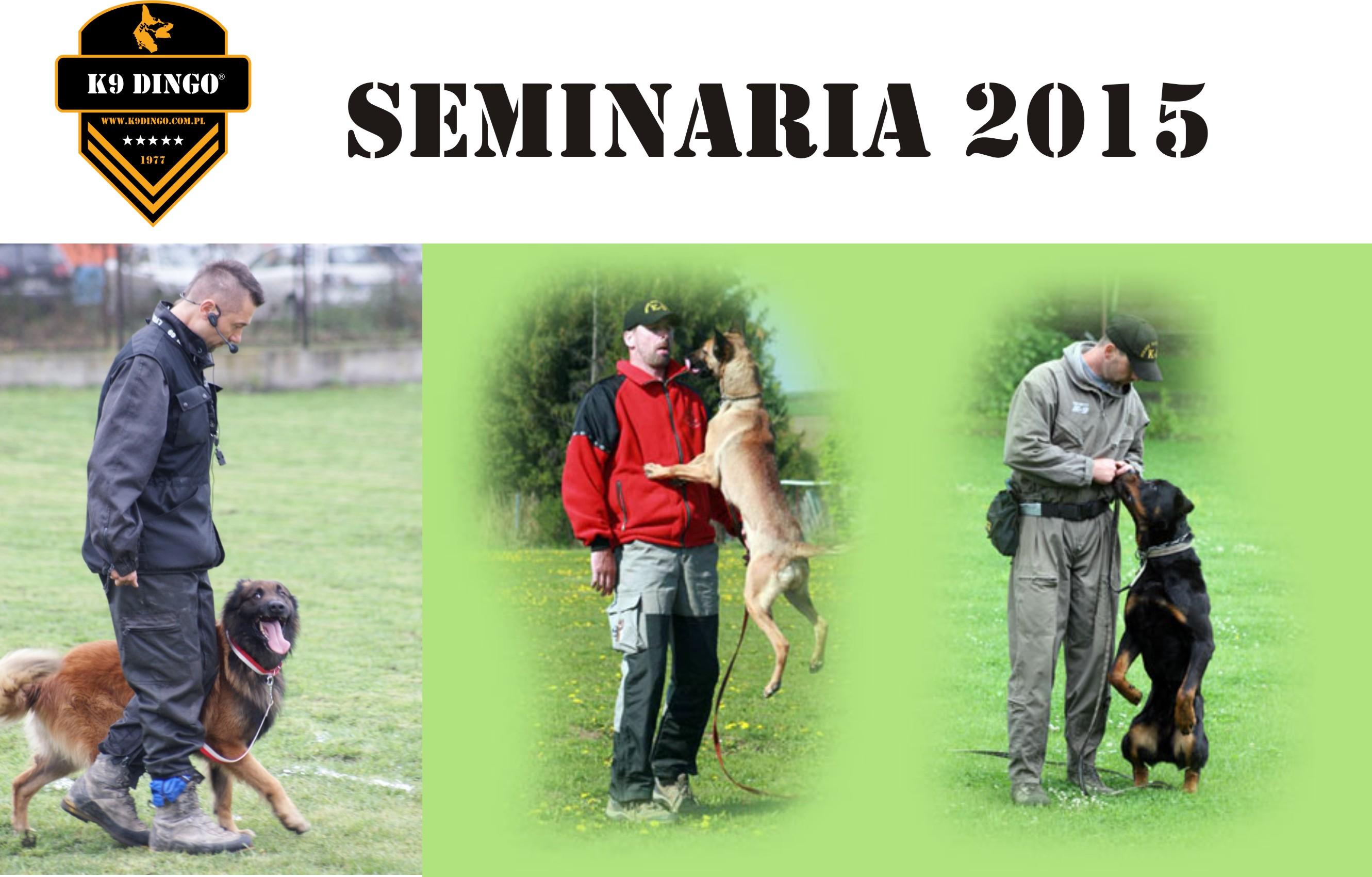 Semianria w K-9 Dingo